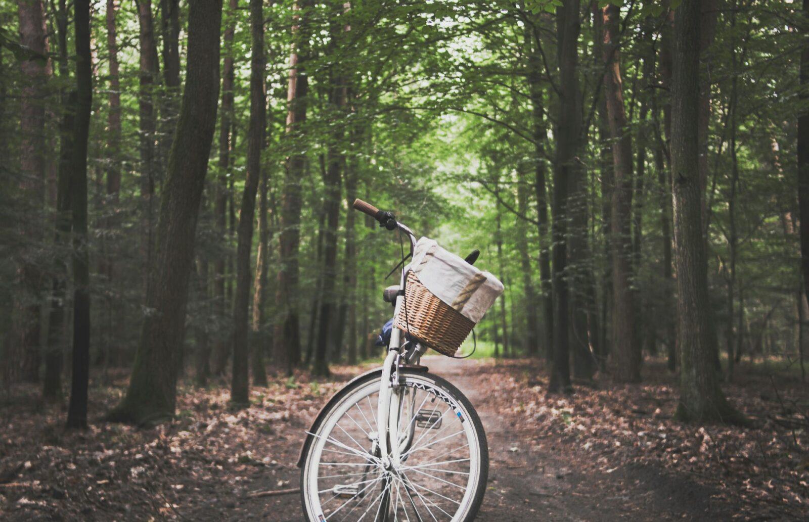 Ekologiczne środki transportu - jak przemieszczać się w stylu eko