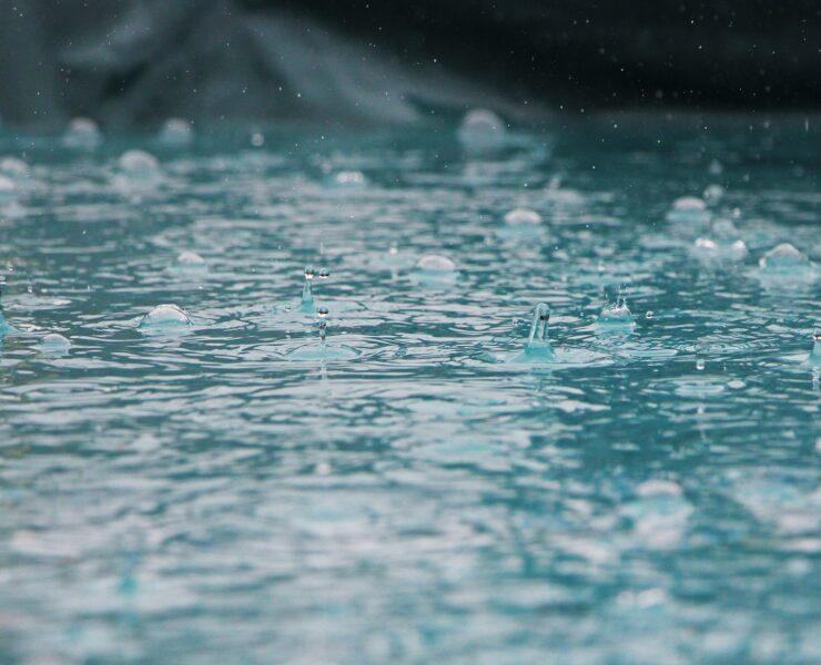 Jak zbierać deszczówkę i do czego ją wykorzystać?